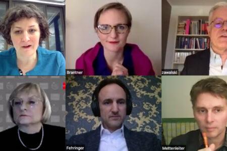 Screenshot der Videokonferenz mit Jeanne Barseghian, Franziska Brantner, Thomas Zawalski, Brigitta Schrempp, Dominik Fehringer und Bernd Mettenleiter.